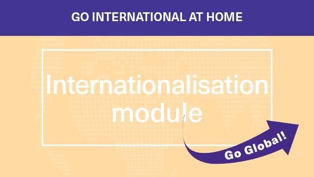 Internationalisation module